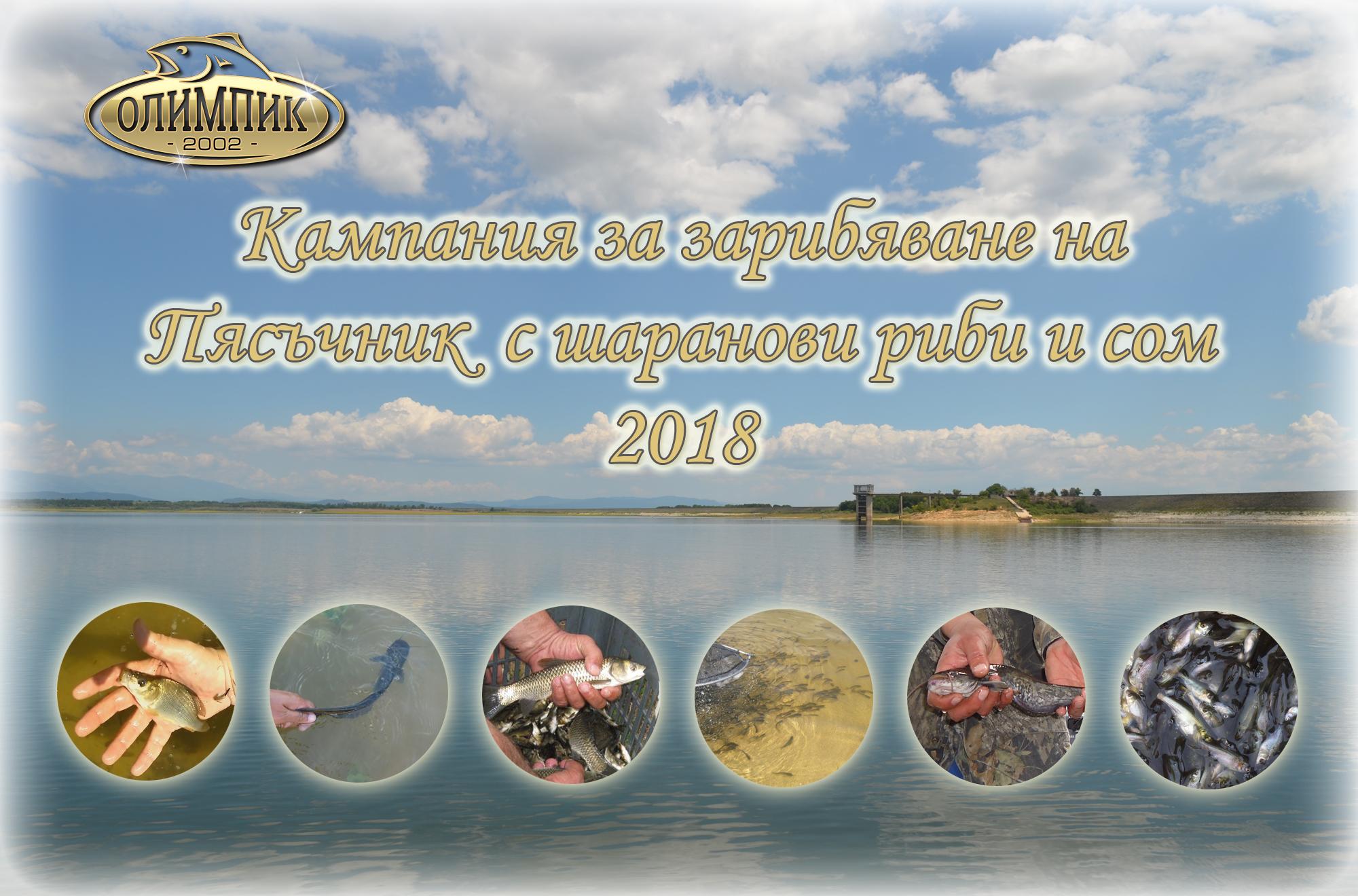 Дарителска кампания за зарибяване на Пясъчник с шаранови риби и сом 2018