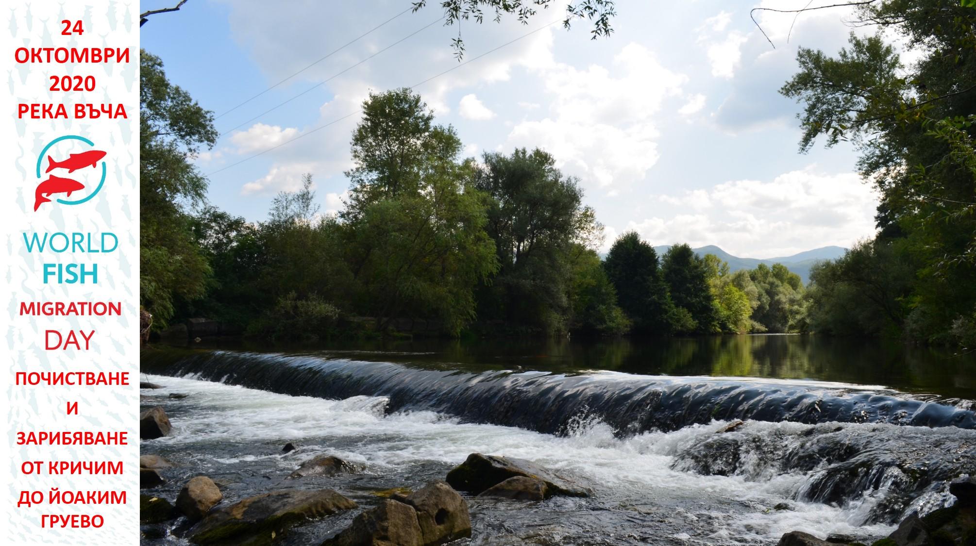 """Организация  за екоакция: """"Дай шанс на балканката"""" - река Въча 24.10.2020"""